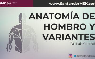 Anatomía de hombro y variantes. Dr Luis Cerezal